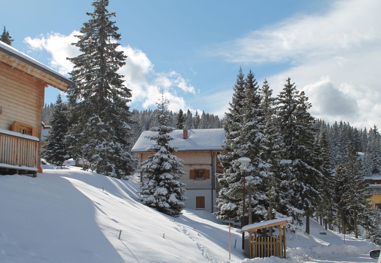 Chalet in St. Stefan - FDK Sauna 021